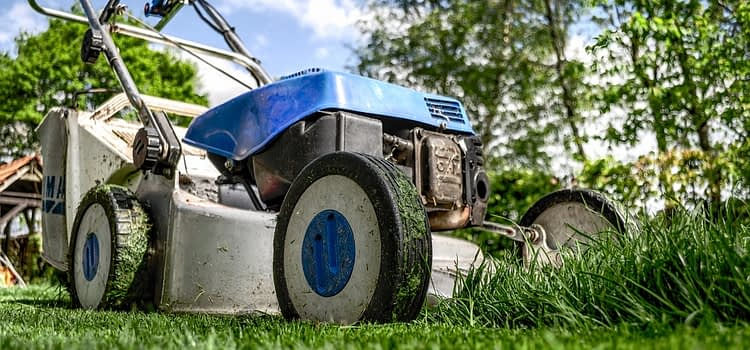 The Ultimate Guide to Choosing the Best Push Lawn Mower